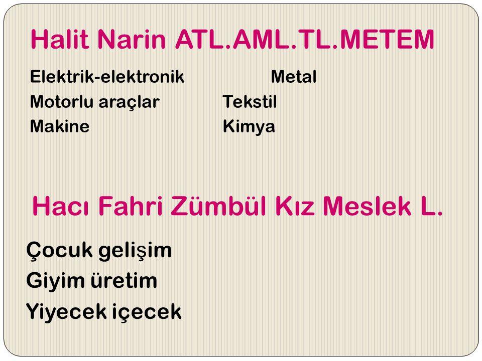 Halit Narin ATL.AML.TL.METEM