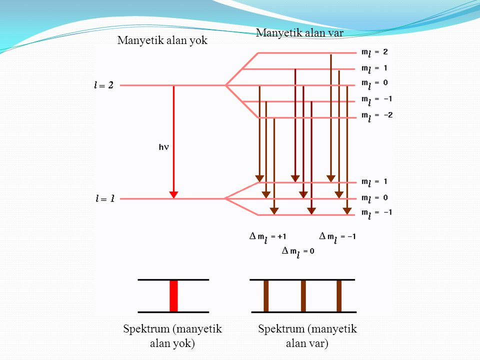 Spektrum (manyetik alan yok) Spektrum (manyetik alan var)