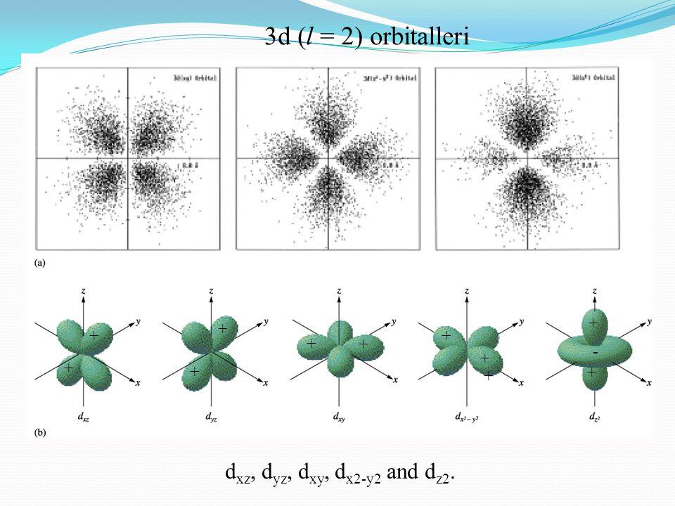 3d (l = 2) orbitalleri dxz, dyz, dxy, dx2-y2 and dz2. + + + + + + - +