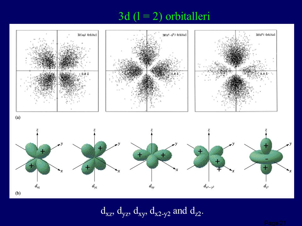 3d (l = 2) orbitalleri dxz, dyz, dxy, dx2-y2 and dz2. + + + + + + - +