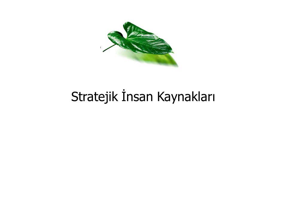 Stratejik İnsan Kaynakları