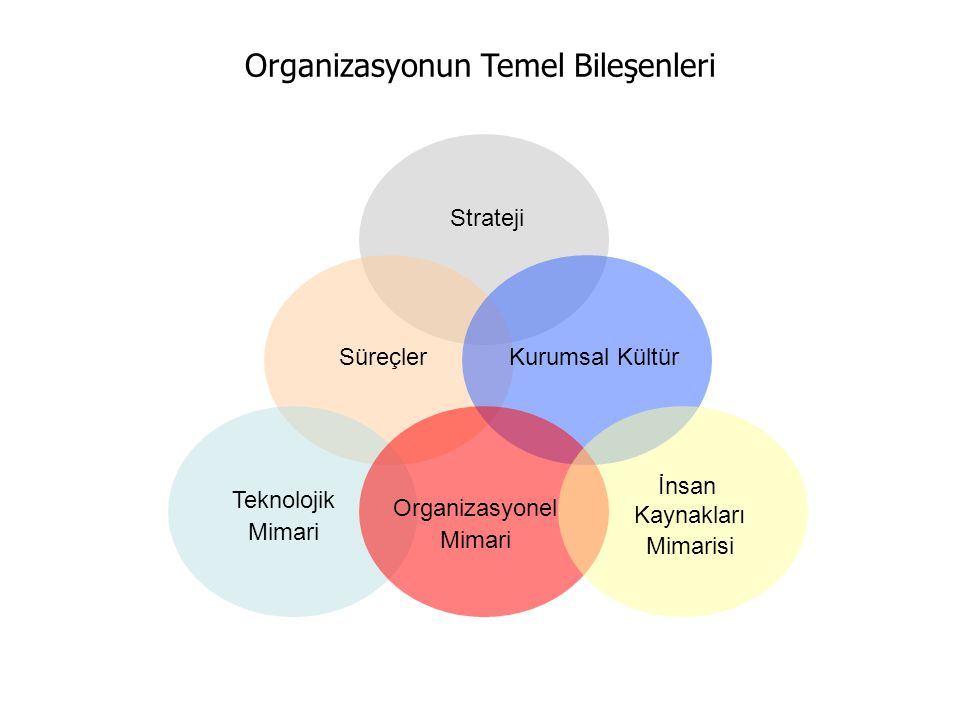 Organizasyonun Temel Bileşenleri