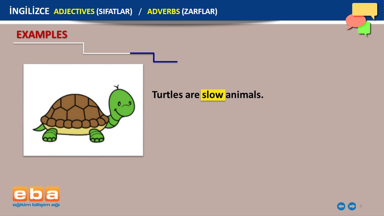 EXAMPLES Turtles are slow animals.