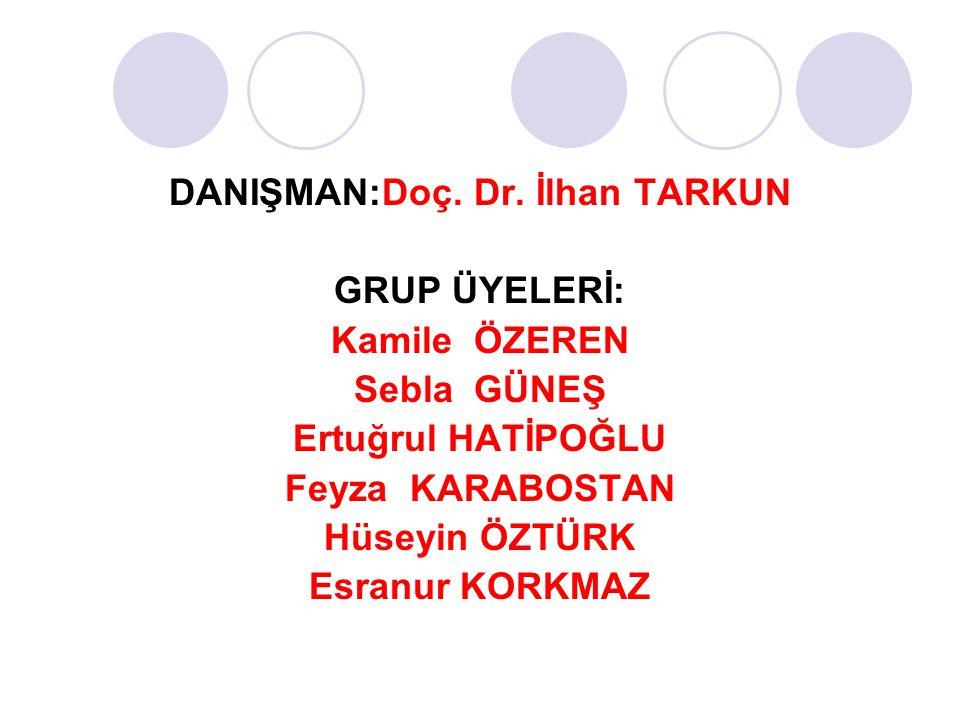 DANIŞMAN:Doç. Dr. İlhan TARKUN