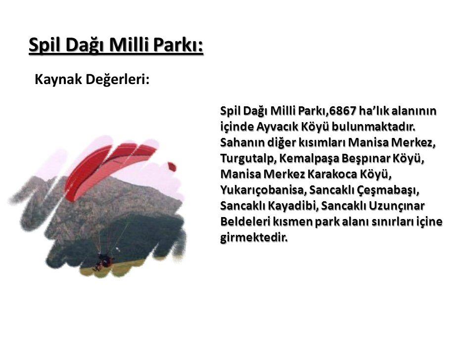 Spil Dağı Milli Parkı: Kaynak Değerleri: