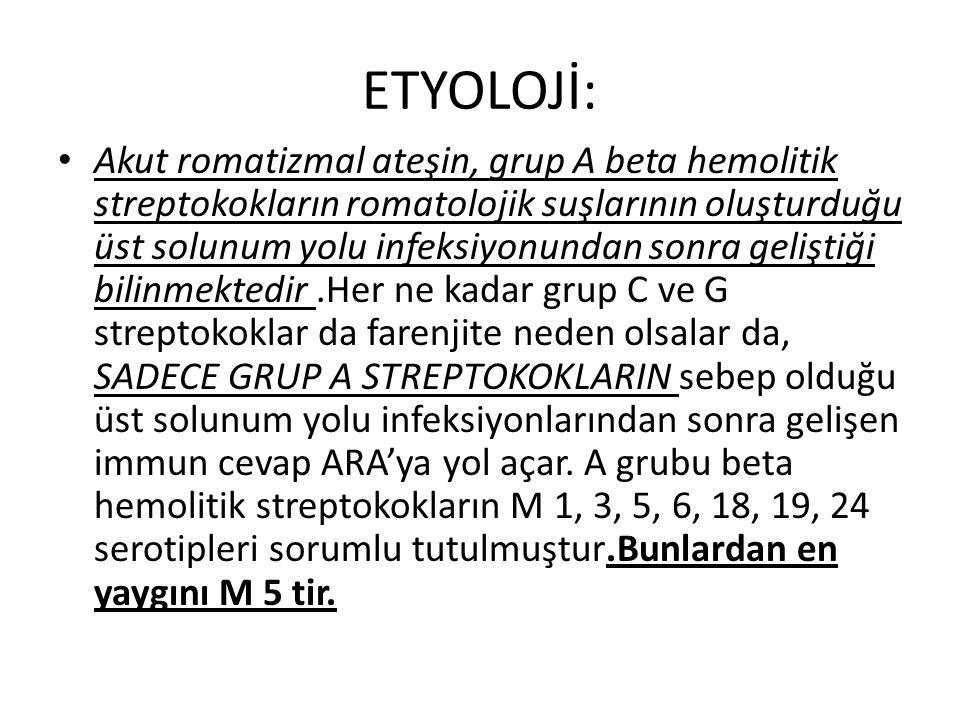 ETYOLOJİ: