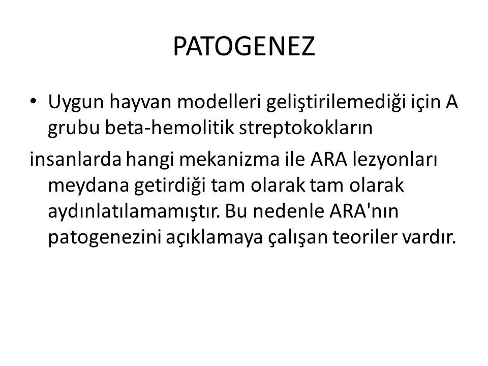 PATOGENEZ Uygun hayvan modelleri geliştirilemediği için A grubu beta-hemolitik streptokokların.