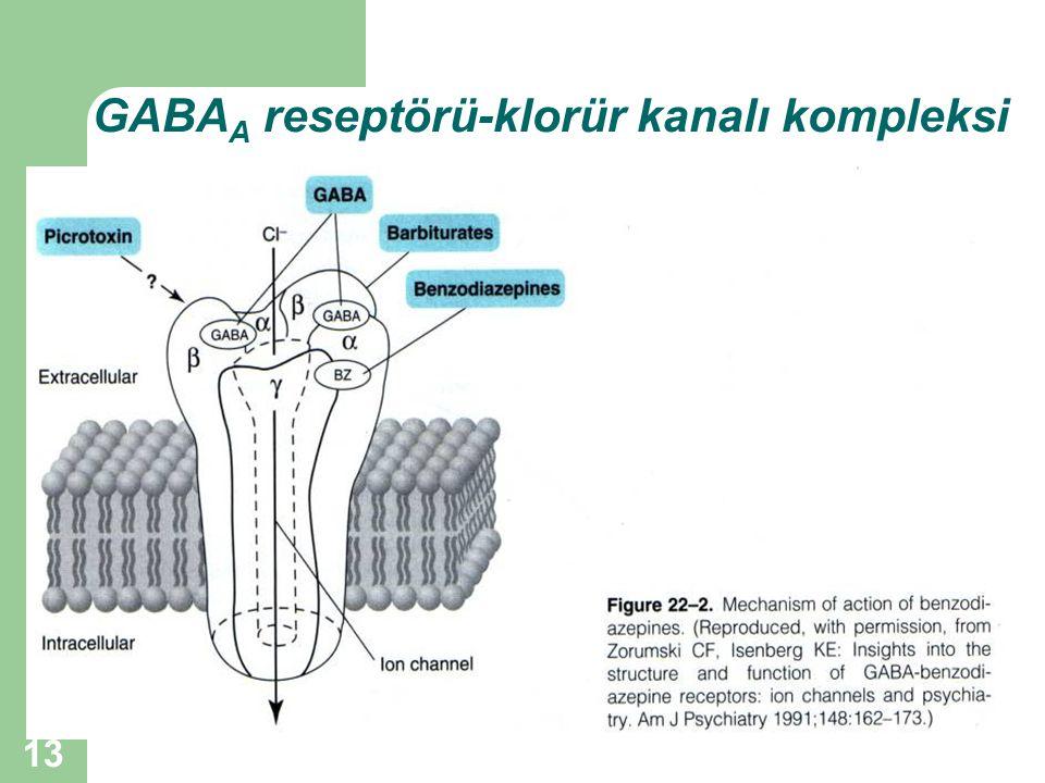 GABAA reseptörü-klorür kanalı kompleksi