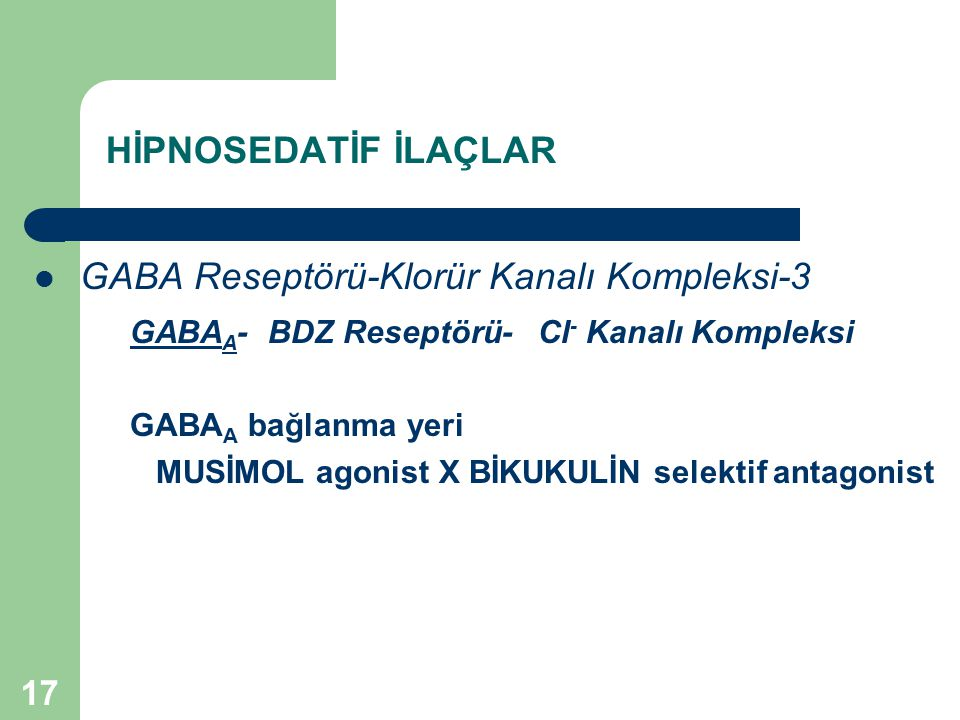 GABA Reseptörü-Klorür Kanalı Kompleksi-3