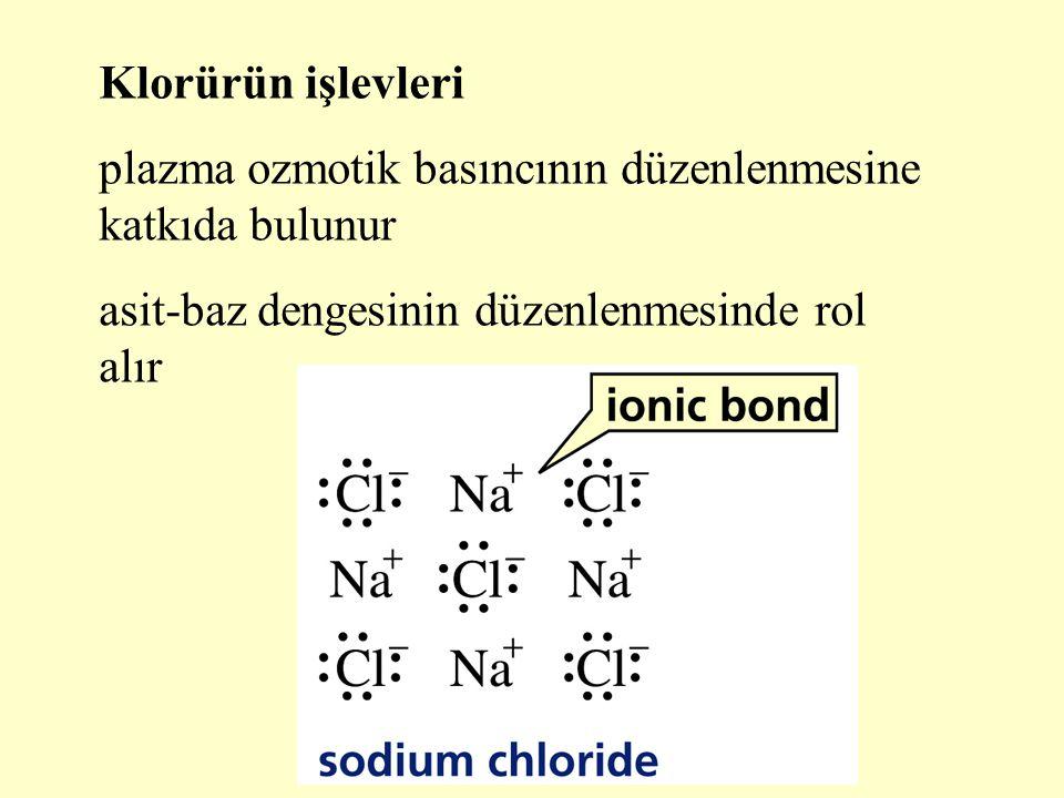 Klorürün işlevleri plazma ozmotik basıncının düzenlenmesine katkıda bulunur.