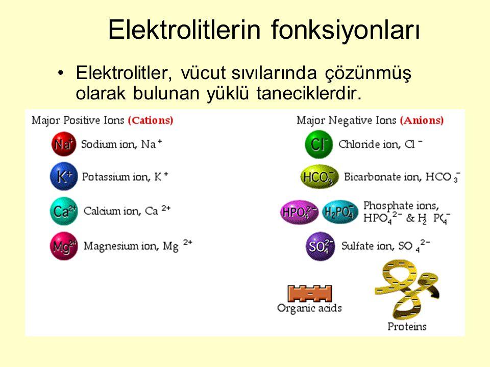 Elektrolitlerin fonksiyonları