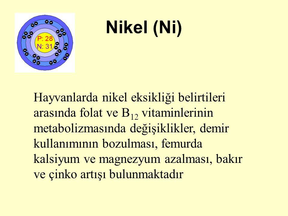 Nikel (Ni)