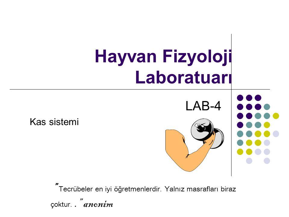 Hayvan Fizyoloji Laboratuarı