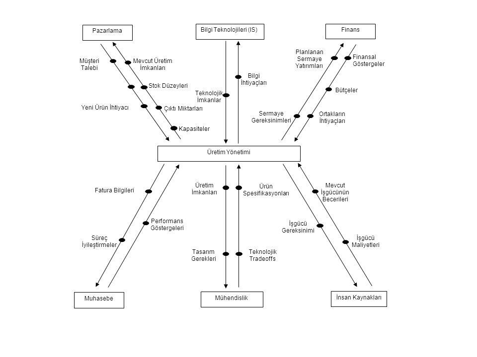 Bilgi Teknolojileri (IS) Finans