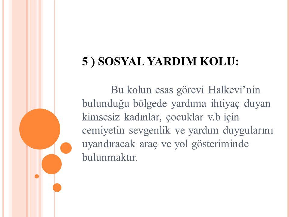 5 ) SOSYAL YARDIM KOLU: