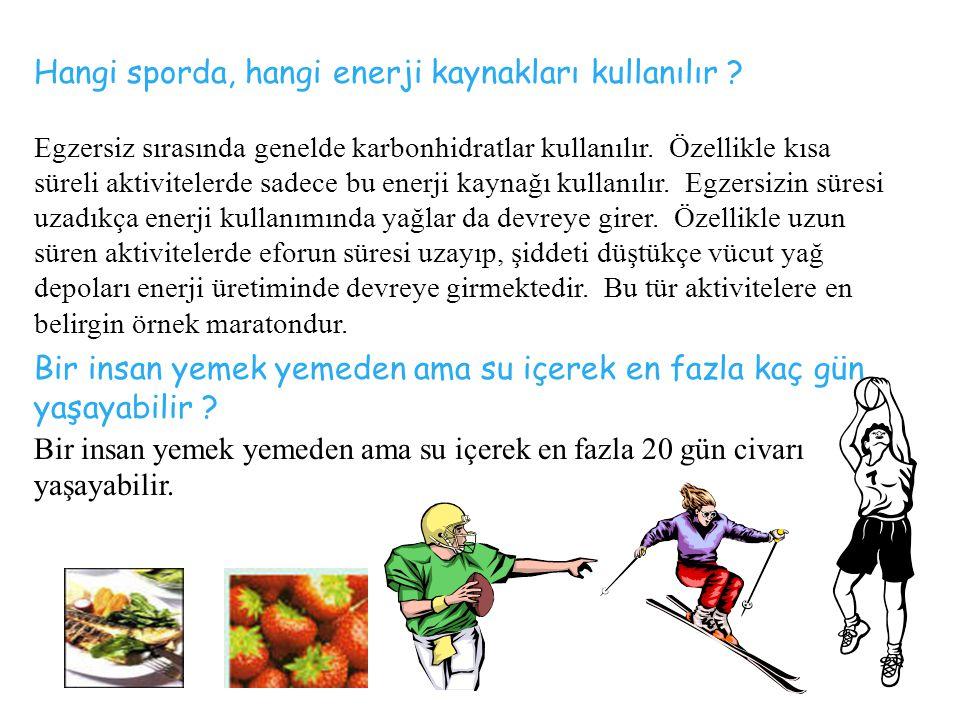 Hangi sporda, hangi enerji kaynakları kullanılır