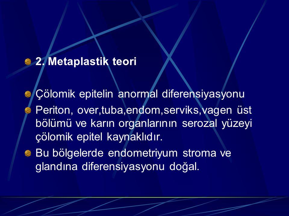 2. Metaplastik teori Çölomik epitelin anormal diferensiyasyonu.