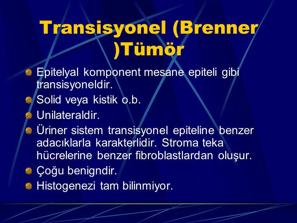 Transisyonel (Brenner )Tümör