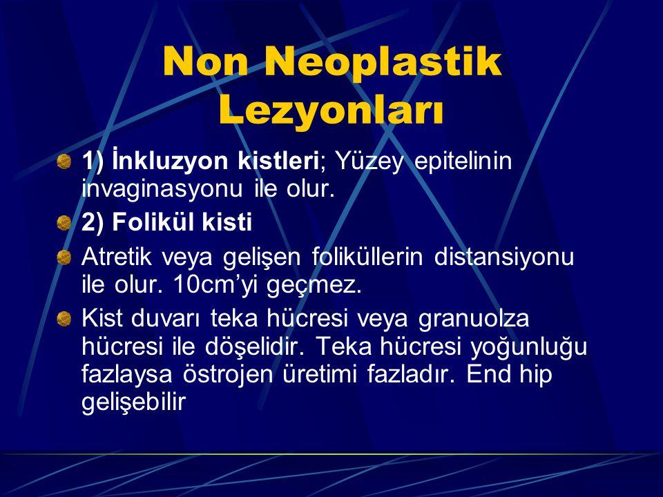 Non Neoplastik Lezyonları