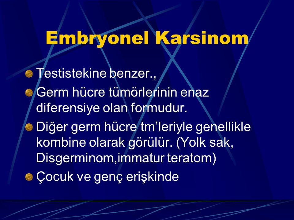 Embryonel Karsinom Testistekine benzer.,