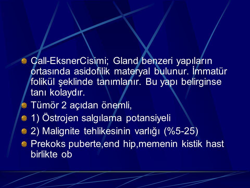 Call-EksnerCisimi; Gland benzeri yapıların ortasında asidofilik materyal bulunur. İmmatür folikül şeklinde tanımlanır. Bu yapı belirginse tanı kolaydır.