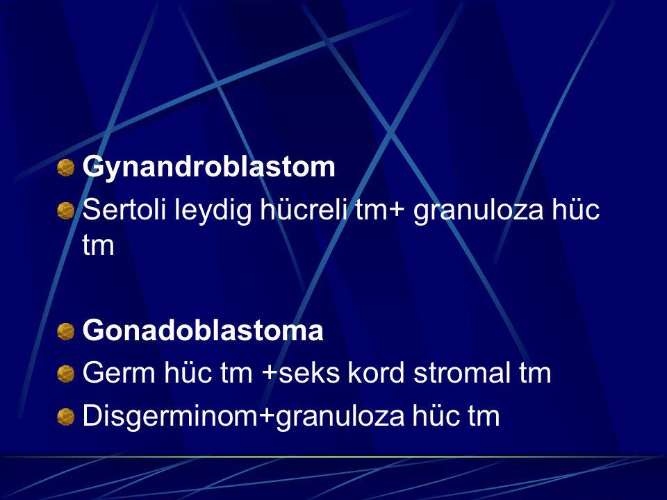 Gynandroblastom Sertoli leydig hücreli tm+ granuloza hüc tm. Gonadoblastoma. Germ hüc tm +seks kord stromal tm.