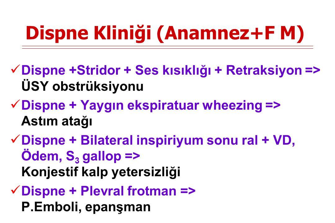Dispne Kliniği (Anamnez+F M)