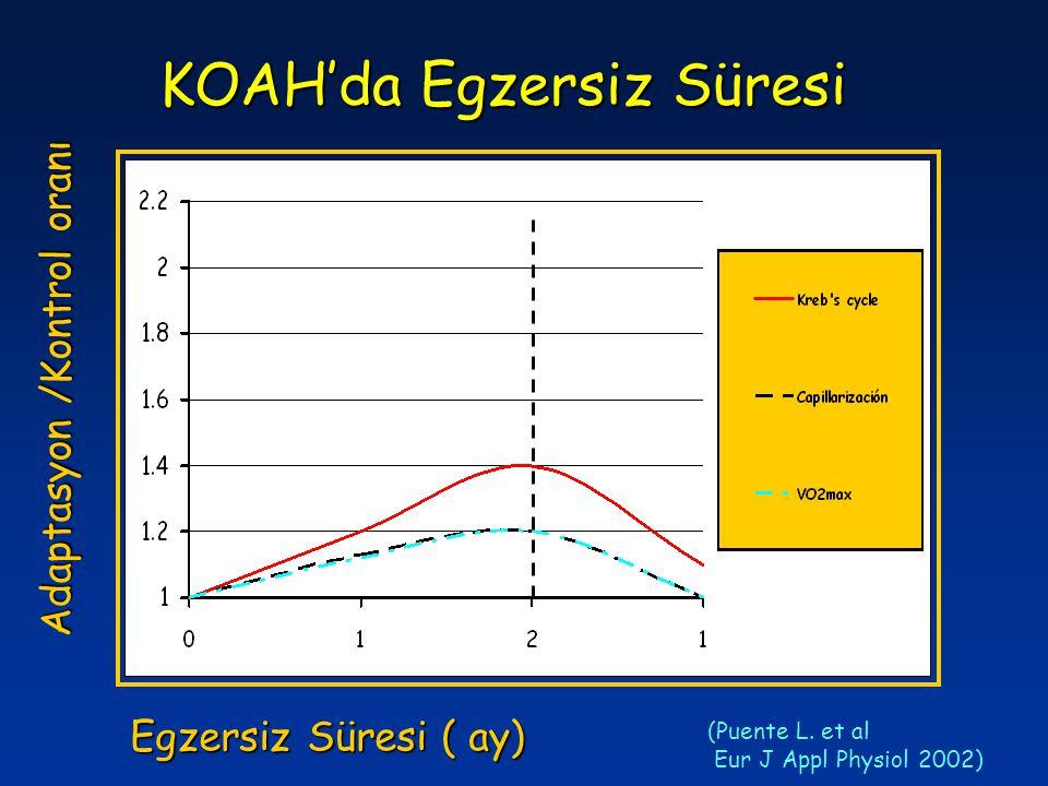KOAH'da Egzersiz Süresi