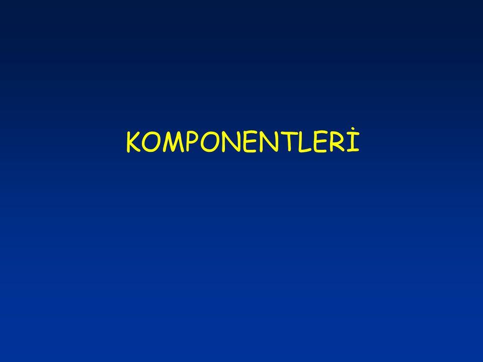 KOMPONENTLERİ