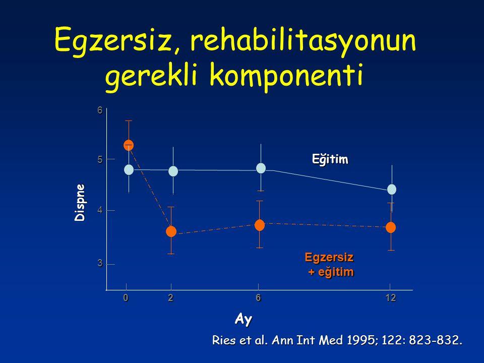 Egzersiz, rehabilitasyonun gerekli komponenti