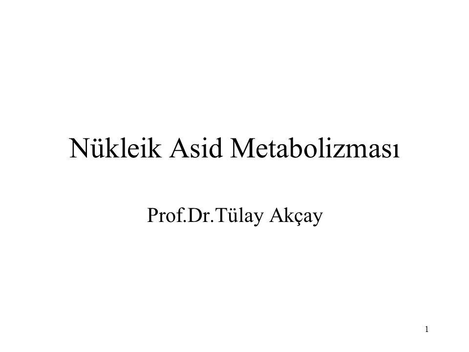 Nükleik Asid Metabolizması
