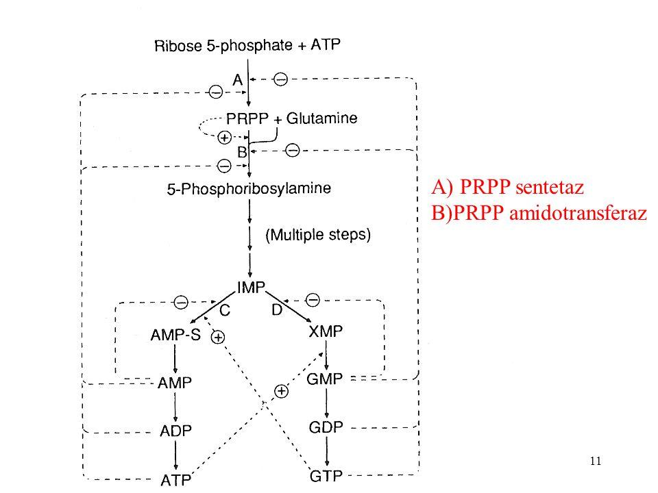 A) PRPP sentetaz B)PRPP amidotransferaz