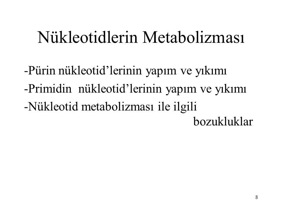 Nükleotidlerin Metabolizması