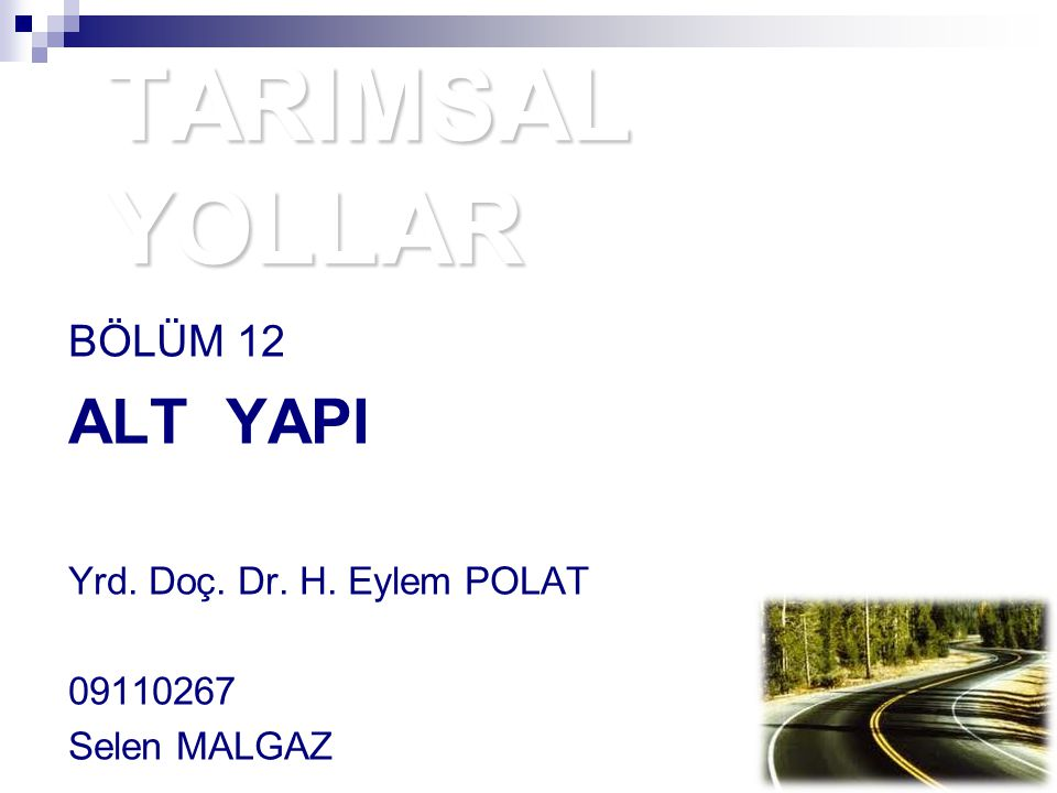 BÖLÜM 12 ALT YAPI Yrd. Doç. Dr. H. Eylem POLAT 09110267 Selen MALGAZ