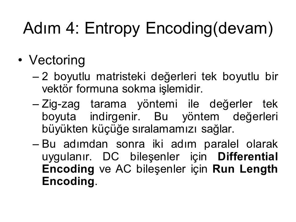 Adım 4: Entropy Encoding(devam)