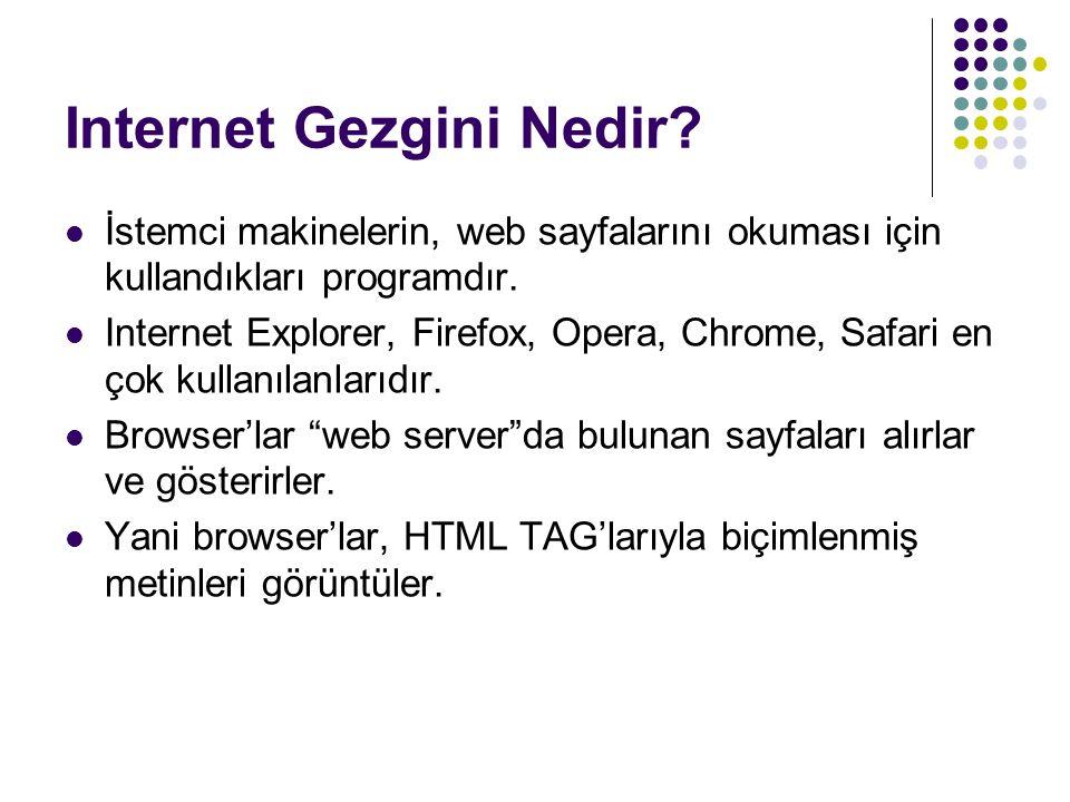 Internet Gezgini Nedir