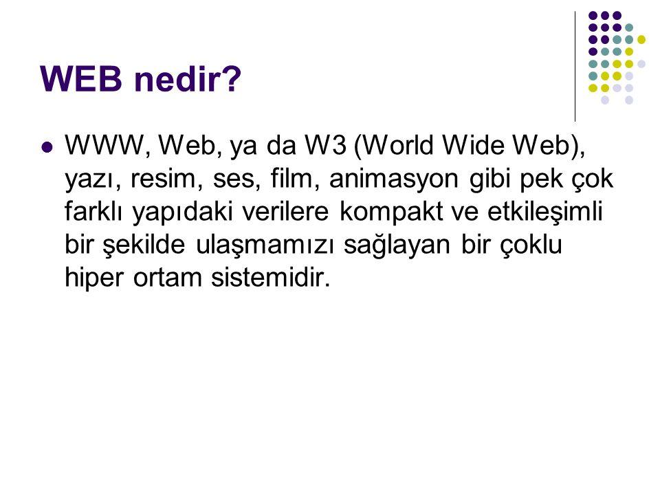 WEB nedir