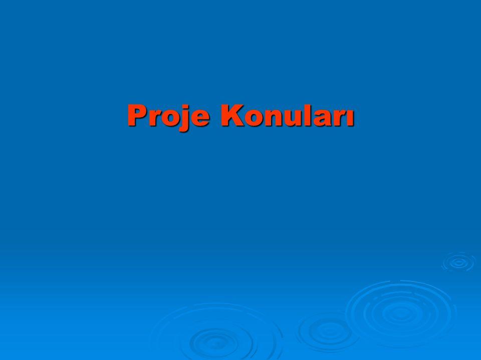 Proje Konuları
