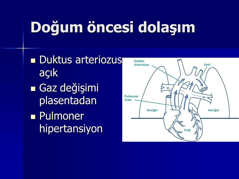 Doğum öncesi dolaşım Duktus arteriozus açık Gaz değişimi plasentadan