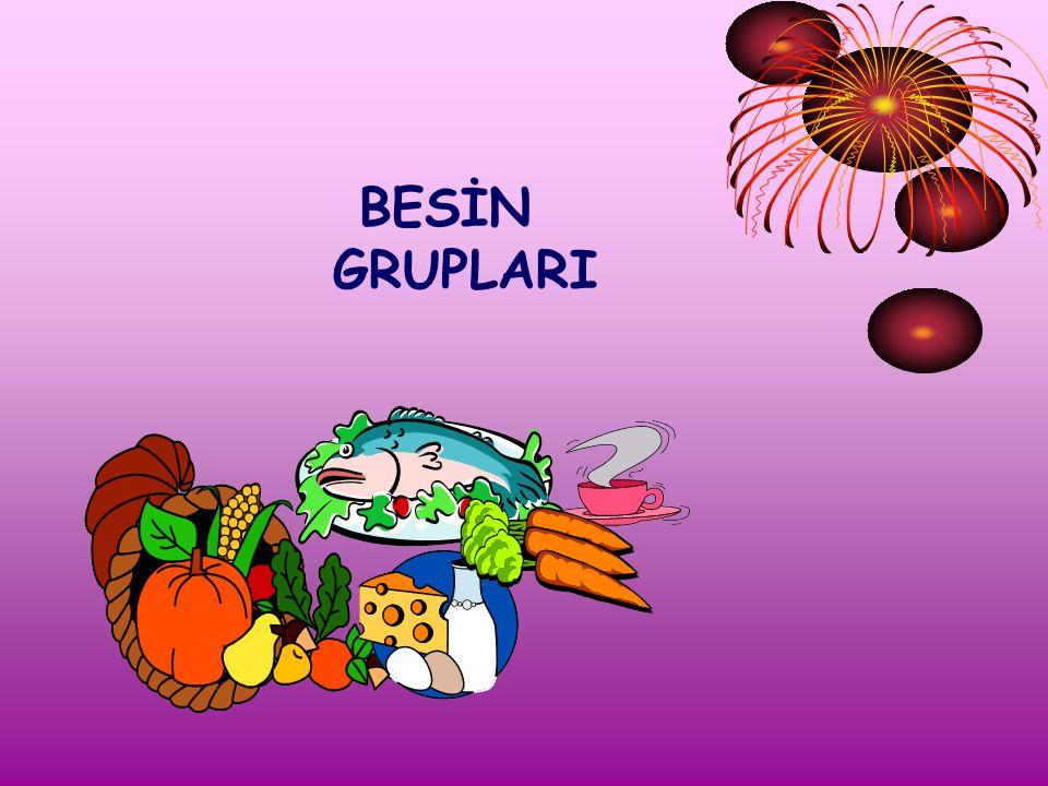 BESİN GRUPLARI
