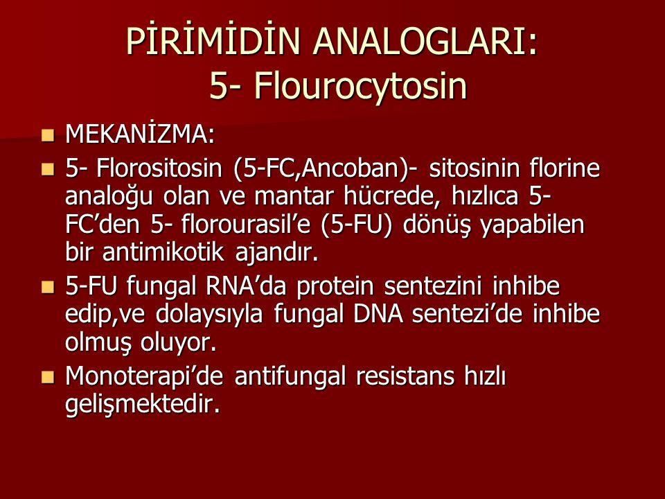 PİRİMİDİN ANALOGLARI: 5- Flourocytosin