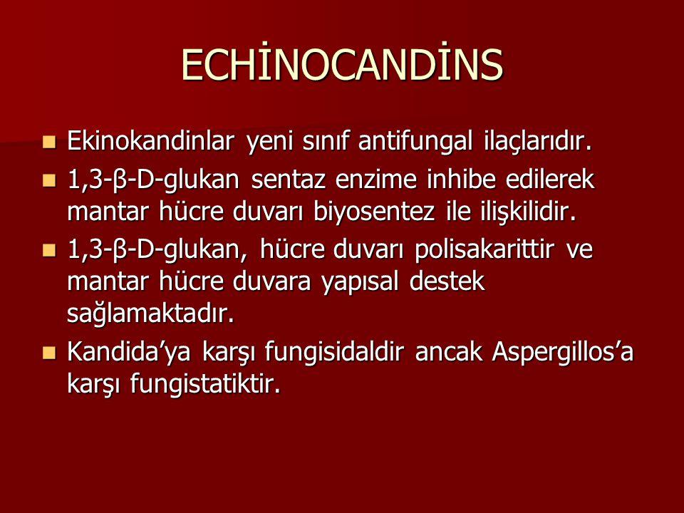 ECHİNOCANDİNS Ekinokandinlar yeni sınıf antifungal ilaçlarıdır.