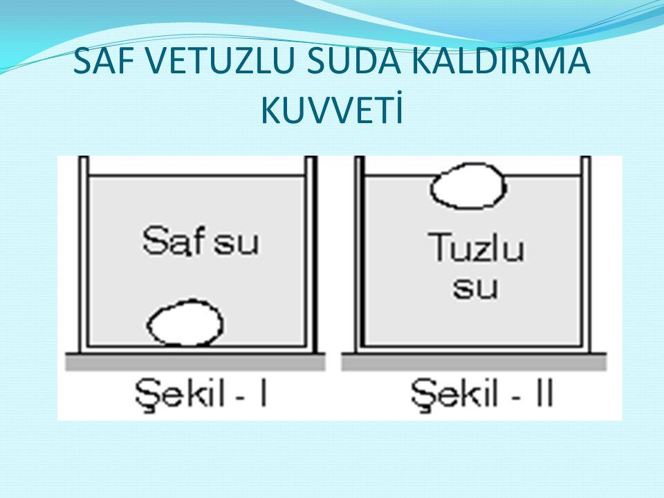 SAF VETUZLU SUDA KALDIRMA KUVVETİ