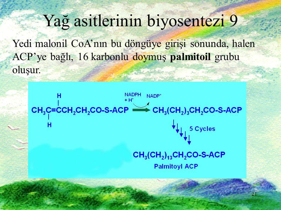 Yağ asitlerinin biyosentezi 9