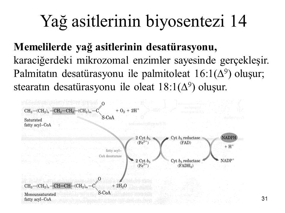 Yağ asitlerinin biyosentezi 14