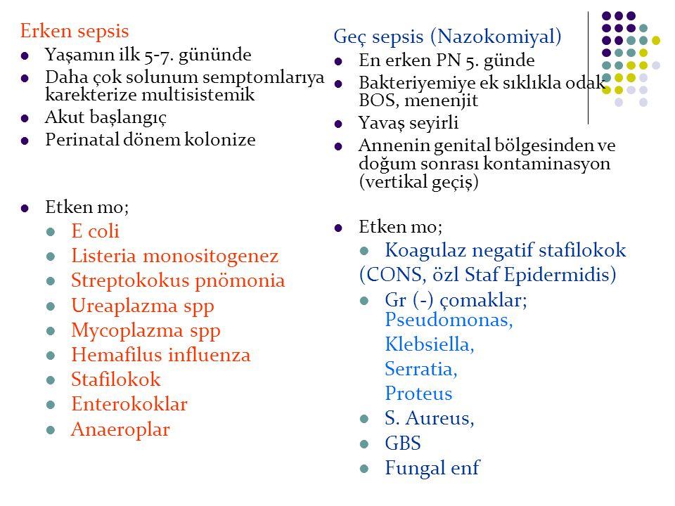 Listeria monositogenez Streptokokus pnömonia Ureaplazma spp