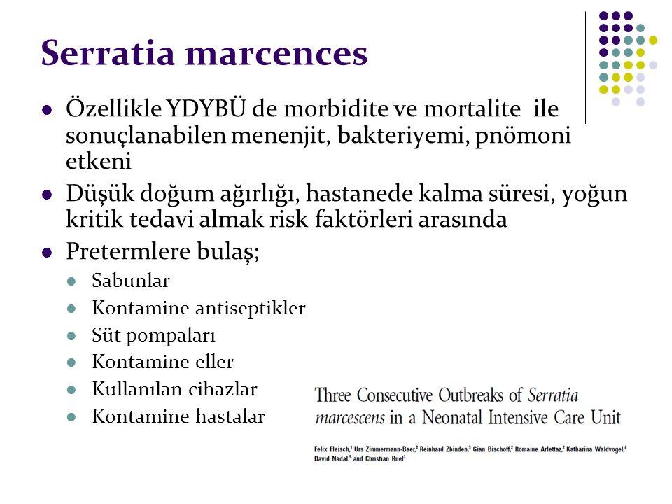 Serratia marcences Özellikle YDYBÜ de morbidite ve mortalite ile sonuçlanabilen menenjit, bakteriyemi, pnömoni etkeni.