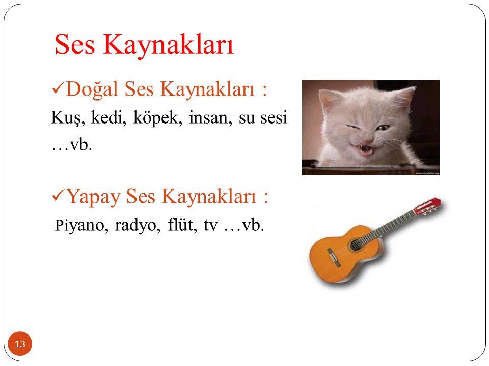 Ses Kaynakları Doğal Ses Kaynakları : Yapay Ses Kaynakları :