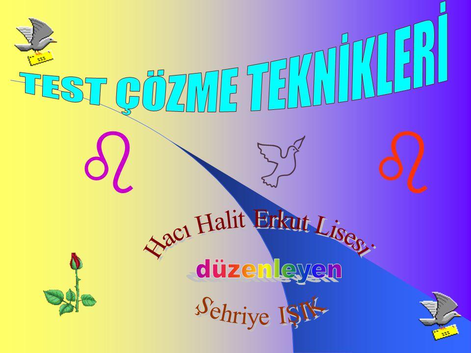 Hacı Halit Erkut Lisesi