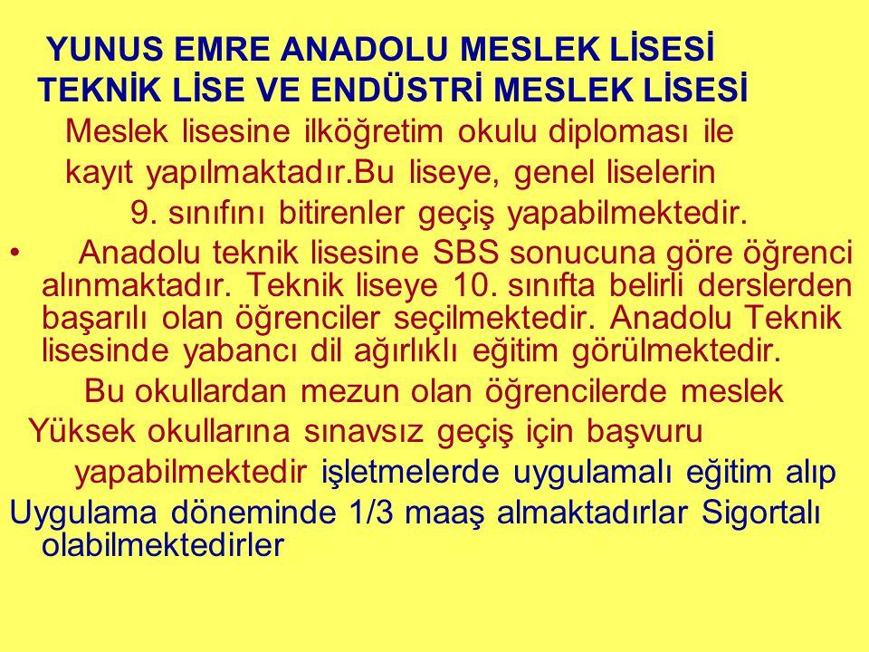 YUNUS EMRE ANADOLU MESLEK LİSESİ